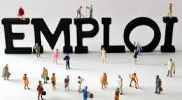 L'emploi : les chiffres